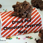 CrockPot Chocolate Covered Nuts Avi