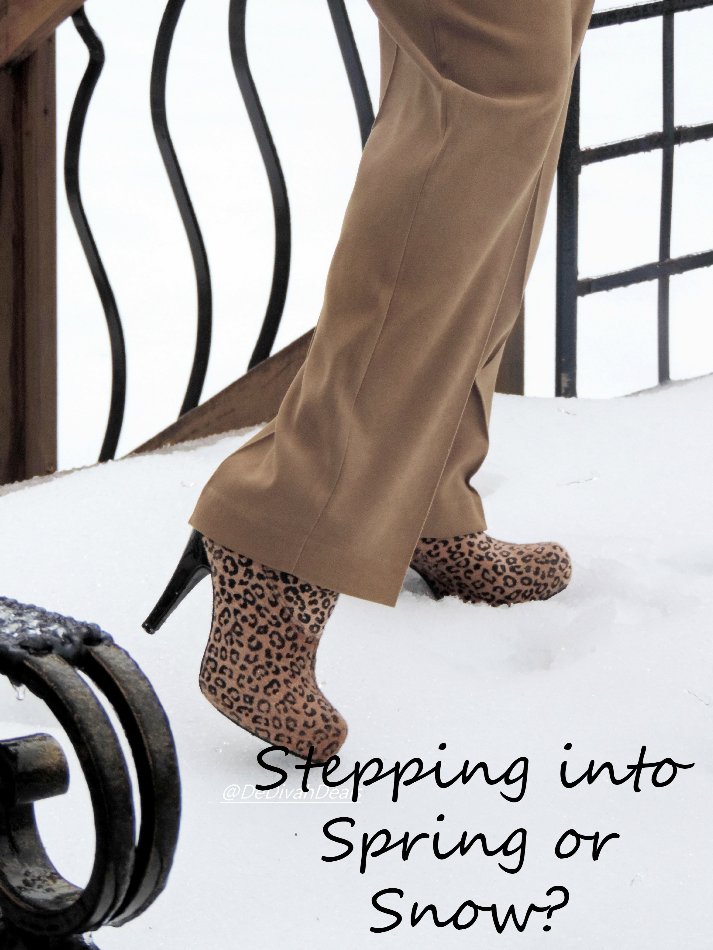 Stepping Into: Stepping Into Spring Or Snow?